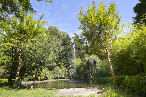 veientana-giardino (4)